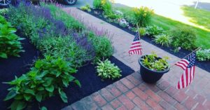 Why Mulch Is Important to Your Landscape