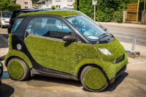 Your Lawn is Like Your Car