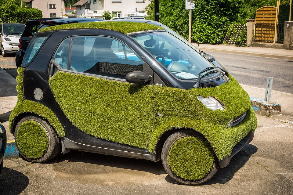 Read more about the article Your Lawn is Like Your Car